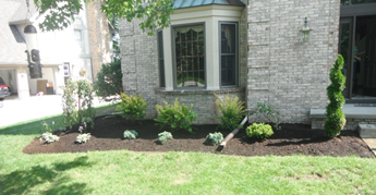 Flower Beds, Small Bushes, Trees & Shrubs